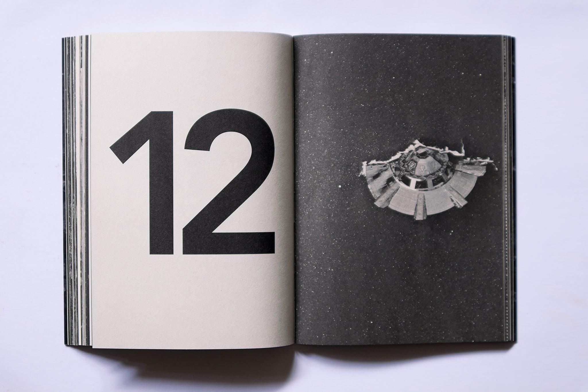 O Falcão Peregrino 15